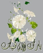 حلاوة الايمان 935817